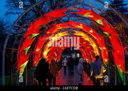 Red and yellow illuminated arch at Glow 2019, RHS Wisley near Woking, Surrey, an annual Xmas seasonal event of illuminations at night in the gardens - Stock Photo