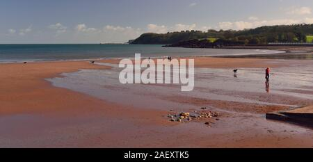 Low tide at Broadsands beach. - Stock Photo