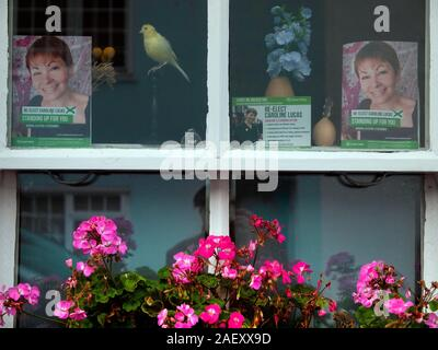The front window of a home in the North Laine area of Brighton - Stock Photo