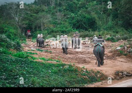 Tourists go on elephants trekking. Laos. Luang Prabang - Stock Photo
