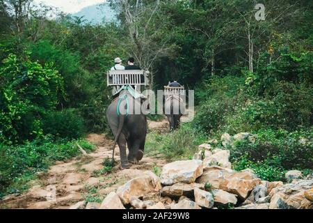Tourist group rides through jungle on the backs of elephants. - Stock Photo