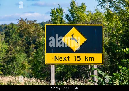 Deer regularly cross this road, be alert for animals next 15 km sign. Warning road signs, selective focus and close up with forest trees background - Stock Photo