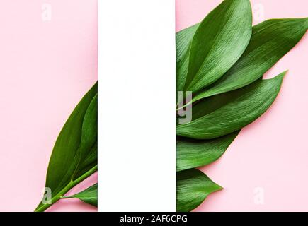 Tropical  leaves  on pink background. Flat lay, top view, copy space. Creative minimal background with tropical leaves. - Stock Photo