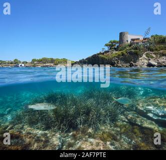 Spain Mediterranean coast with a house in Cadaques and seagrass with fish underwater sea, split view above and below water surface, Costa Brava
