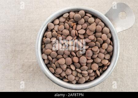 Uncooked Brown Lentils - Stock Photo