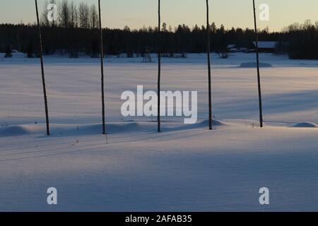 Five tall wooden poles in winter landscape. During summer season the poles are used as plant support for hops. - Stock Photo