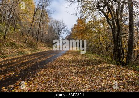 Autumn road in Great Smoky Mountains National Park with colorful leaves of Appalachian fall color. - Stock Photo
