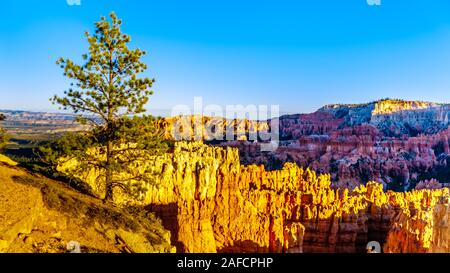 Sunset over the Vermilion Colored Hoodoos at Sunset Point of Bryce Canyon National Park, Utah, United States