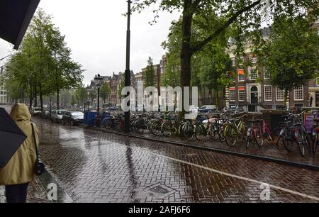 Amsterdam, Holland, August 2019. Rainy day in the old town. The trees are reflected on the wet road. A row of parked bikes. - Stock Photo