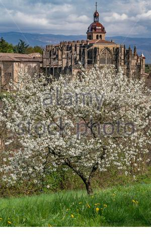 Saint-Antoine-l'Abbaye during springtime, when the Abbey church seems to emerge from blooming apple trees - Stock Photo