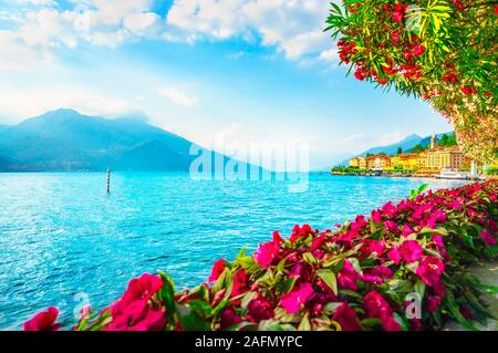 Bellagio town and flowers in Como lake district. Italian traditional lake village. Italy, Europe. - Stock Photo