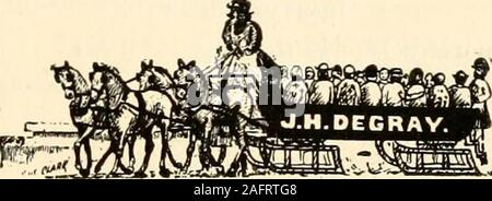 . Guide des adresses des Canadien-Francais de la Nouvelle- Angleterre. TaylorRoy A. 80 Market, C. F. R. 14 ChestnutSimard I. 89 Academy .Jos. 83 Grove, C. F.St-Amour A. épi. 94 Main, rés. 11.3 MainSt-Amour W. épi. etc., 13 Grove, C. F. {Voir page 29.)St-Aubin A. 146 SchoolSt-Cyr A. 38 Erlive C. 697 Gratton H. 19 Ash L. M. 22 SpringfieldSte-Marie A. 76 Grove, C. F. A. 51 Middle, C. F. E. 256 Gratton H. 203 Gratton L. 76 Grove, C. F.St-Pierre A. 110 ChicopeeTatro M. Chicopee, Will.Terrault .J. H. 78 Court, C. F.Terrien M. 26 W. MainTétrault A. 172 Gratton A. 18 Léonard A. 247 Hampden A. Il Broad