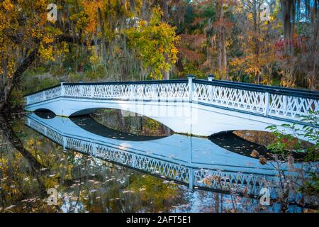 Magnolia Plantation and Gardens is a historic house with gardens located on the Ashley River west of Ashley, Charleston County, South Carolina. - Stock Photo