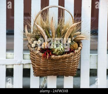 Dried flower arrangement in a wicker basket, hanging on a white picket fence gate in Colonial Williamsburg. Deck the Doors annual Wreath competition. - Stock Photo