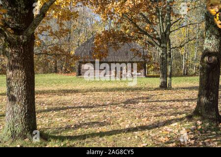 A wooden cabin in the forest surrounded by trees with autumn leaves - Stock Photo