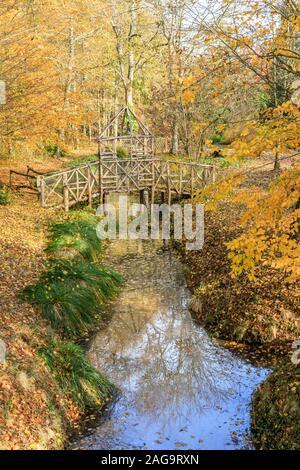 France, Loiret, La Bussiere, Chateau de La Bussiere Park and Gardens, small bridge over a stream in the woods in autumn // France, Loiret (45), La Bus - Stock Photo