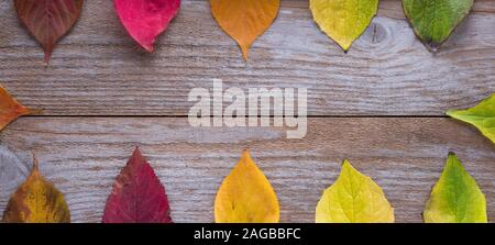 Autumn background, colored leaves on wooden background - Stock Photo