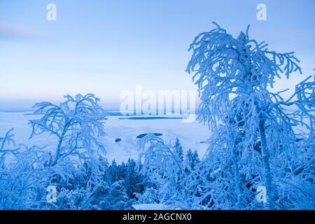 Wintery scenic vista at Koli National Park Finland - Stock Photo