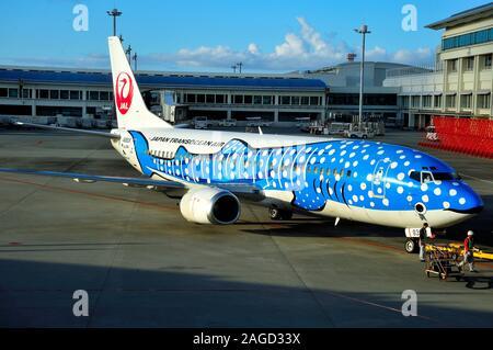 Blue Whaleshark, Boeing B-737/400, JA8939, Japan Transocean Airline, JTA, Naha Airport, Okinawa, Japan