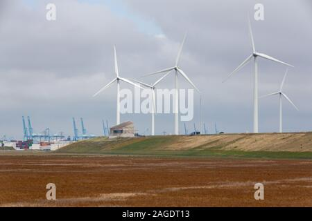 A field of wind turbines near the Port of Rotterdam in The Netherlands - Stock Photo