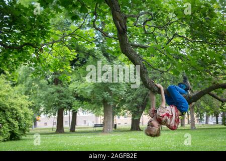 Young cute kids hanging from a tree in the summer - Stock Photo