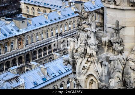 Bell Tower of Notre Dame Cathedral with building in background - Stock Photo
