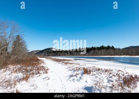 Deer tracks in the snow on a trail along the banks of the Sacandaga River in the Adirondack Mountains, NY USA - Stock Photo