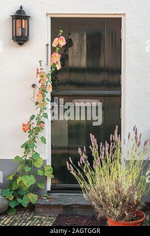Green door in a white plastered wall with blossoming flowers in front somewhere in The Netherlands - Stock Photo