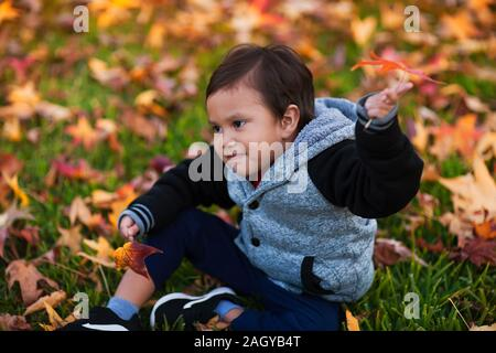 Cute little boy wearing a varsity jacket during autumn while sitting among the fallen leaves. - Stock Photo