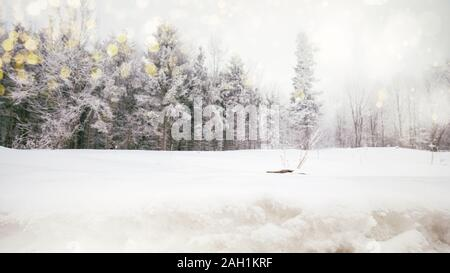 Winter Forest landscape background with a lot of snow - Stock Photo