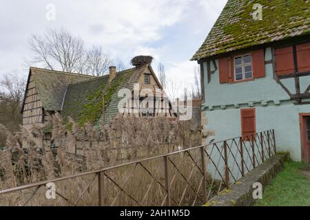 Ungersheim, Haut-Rhin / France - 13. December, 2019: view of historic half-timbered houses in the Alsace region of France - Stock Photo