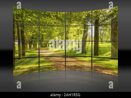 A curved wall. 16 small pictures give a whole picture. Avenue of trees, the sun shining through the trees - Stock Photo