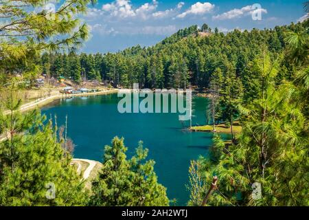 A small lake with sea green colour water in the midst of a dense forest. - Stock Photo