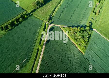 Germany, Bavaria, Aerial view of country roads cutting through green countryside fields in spring