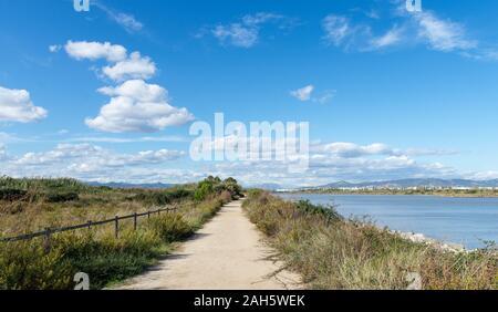 Landscape, Natural Areas of the Llobregat Delta,path, El Prat de Llobregat, province Barcelona,Catalonia, Spain. - Stock Photo
