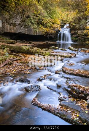 West Burton Falls, also known as Cauldron Falls, with attractive autumn foliage, Wensleydale, Yorkshire Dales National Park, England, UK