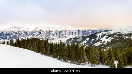 Beautiful winter landscape with snow, fir tree forest and snow-covered mountains. Panorama of Kitzsteinhorn mountain range in pastel tones from Schmit - Stock Photo
