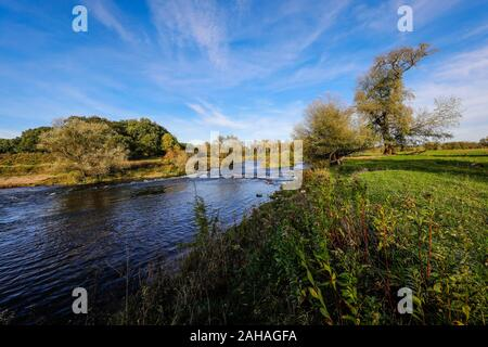 26.10.2019, Datteln, North Rhine-Westphalia, Germany - Lippe, River and floodplain development of the Lippe near Haus Vogelsang, here a near-natural r - Stock Photo