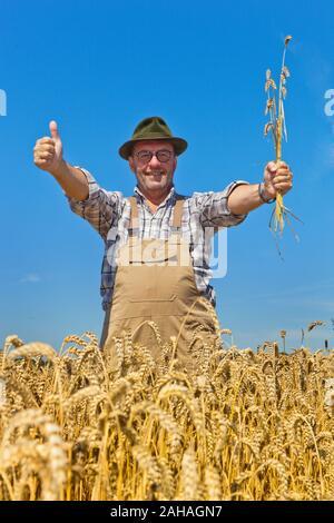 Bauer begutachtet sein Getreide - Stock Photo