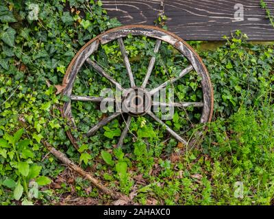 Wheel isolated from abandoned village wheeled vehicle Cabar in Croatia Europe - Stock Photo
