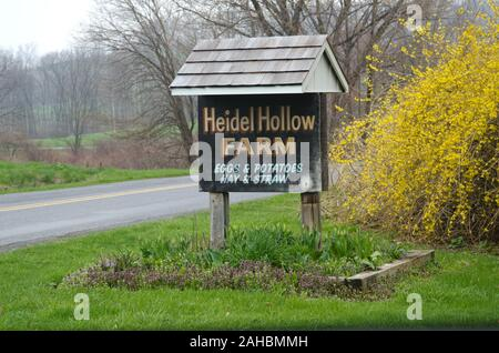 Heidel Hollow Farms has been a family owned farm since 1852 and is currently an 1,800 acre operation in Germansville, PA on April 20, 2011. Led by President David Fink they mainly produce and compact hay for export; additionally they grow produce on 300 acres for local sale within a 40-mile radius. With the financial help of the U.S. Department of Agriculture (USDA) an 896 panel solar array was recently installed on unfarmable diversion ditches.  Rated at 200 kilowatts, they project 240 megawatts of electricity to be produced each year, providing up to 70% of the farms electrical needs. Additi - Stock Photo