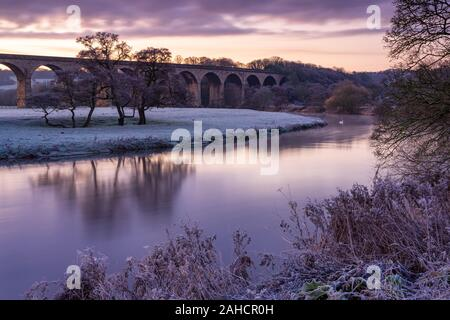 The first light of day on The River Wharfe near Arthington Viaduct gives a purple tone to the landscape on a frosty autumn morning. - Stock Photo