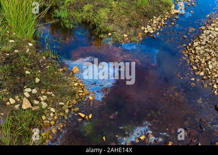 Natural peat-derived hydrocarbons floating on a pool in summer creating colourful reflections, on Blacka  Moor, near Sheffield - Stock Photo