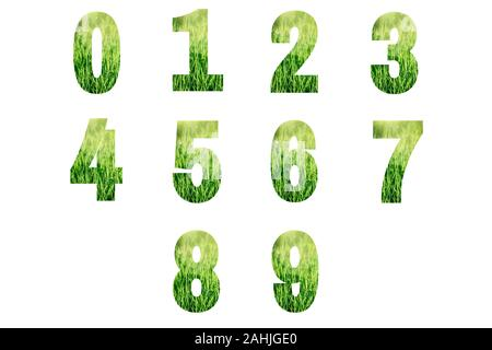 Numbers made from green grass isolated on white background. - Stock Photo