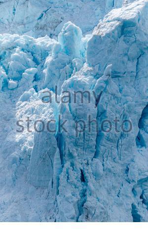 A large block of ice calves off of Margarie Glacier in Glacier Bay National Park, Alaska