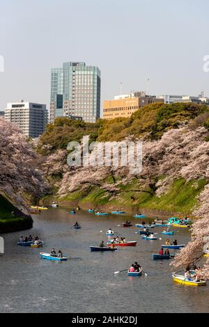 April 6, 2019: Cherry blossoms (know as Sakura) and boats around Chidorigafuchi Park. Tokyo,Japan - Stock Photo