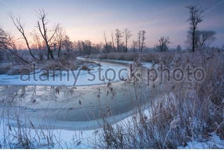Sun rising behind line of trees on frosty winter morning on the Rawka River, Poland, PL - Stock Photo