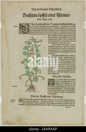 David Kandel. Leaf from New Kreuterbuch by Hieronymus Bock, plate 98 from Woodcuts from Books of the XVI Century. 1580. Germany. Woodcut on paper - Stock Photo