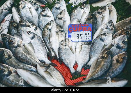 Selling fresh fish in the Turkish market. The inscription in Turkish is translated - sea bream fish. - Stock Photo