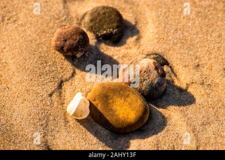 pebbles stones with shell on a sandy beach. - Stock Photo